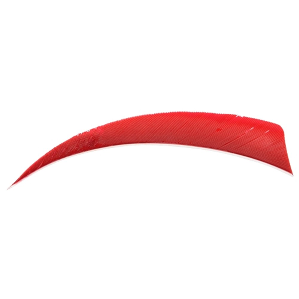 "5"" Solid Shield Fletchings. Red."