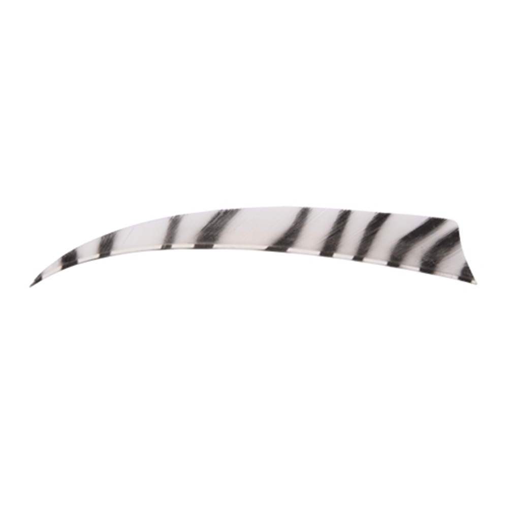 "4"" Zebra Shield Fletchings. White."