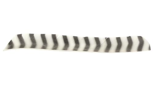 Full Length Barred Fletching. White.