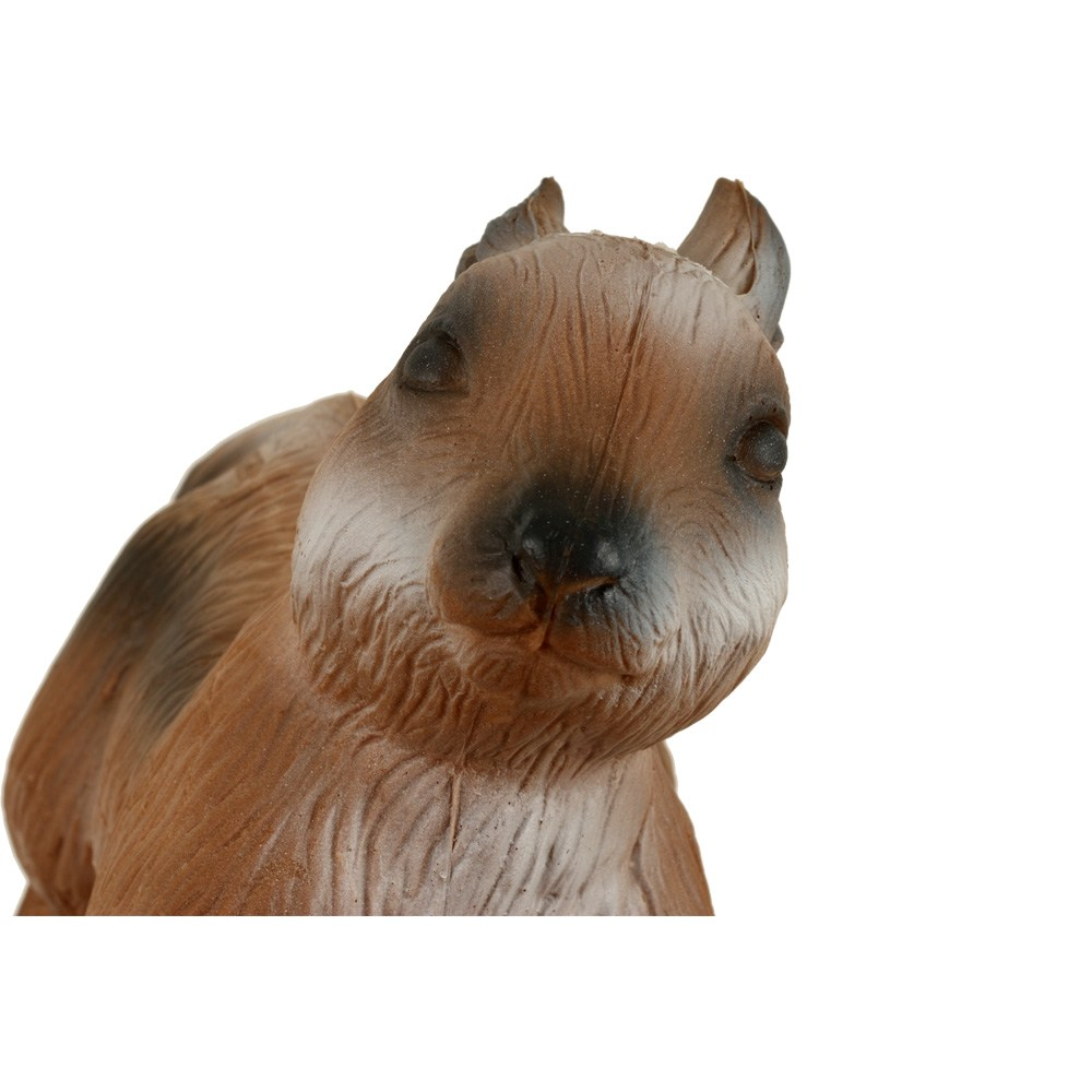 3d Squirrel Alert Front