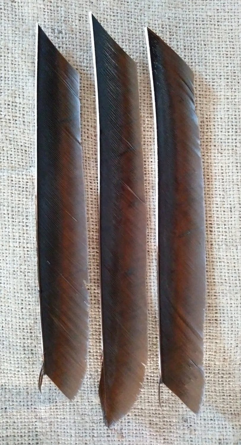 Bronze Brown Fletching