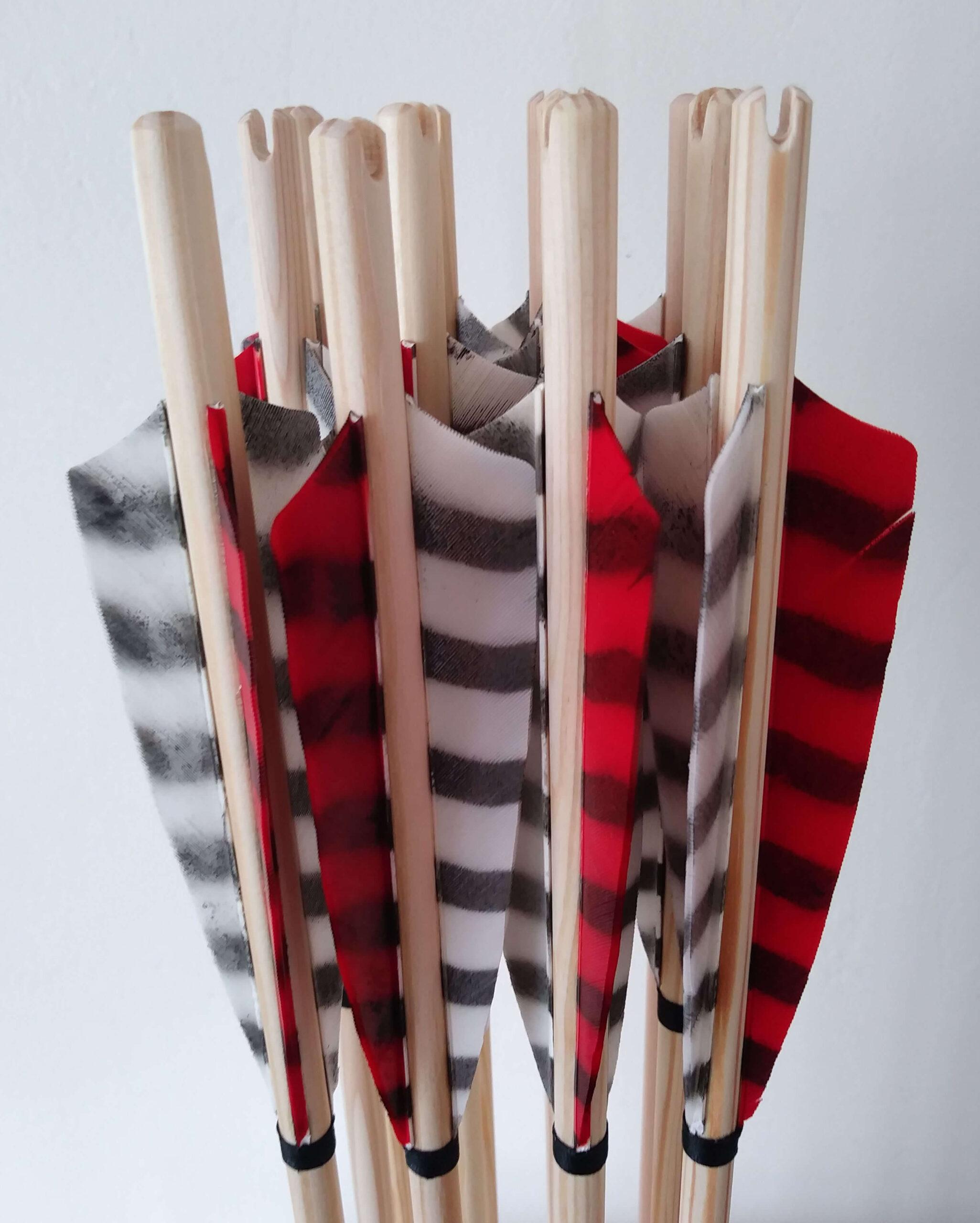 Self Nocked Arrows 5 Inch Fletched x 12