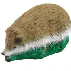 3D Hedgehog