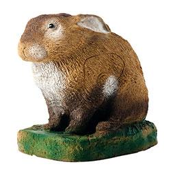 3D Rabbit